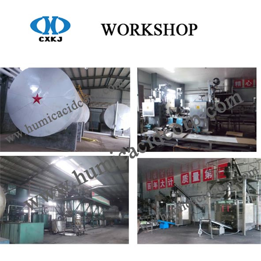 Humic acid workshop