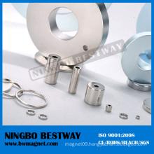 Super Uni-Pole NdFeB Ring Magnet