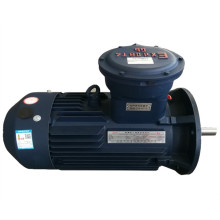 Explosion-Proof Three Phase Asynchronous Electric Motor