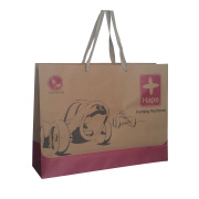 Brown Kraft Paper Bag for Toys (XG-PB-049)