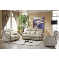 Genuine Leather Chaise Leather Sofa Electric Recliner Sofa Furniture (D841)
