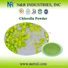 Polvo de Chlorella 100% natural puro