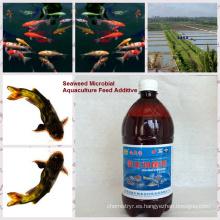 -inoculante bio bacteriano orgánico de algas para piensos de acuicultura