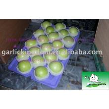 Verkauf 2013 grüner Apfel