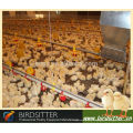 Equipement de volaille automatique de poulet à oiseaux