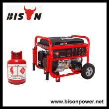 BISON (CHINA) Générateur Fournisseur Tous les types de générateur de gaz, générateur de GPL, générateur de biogaz