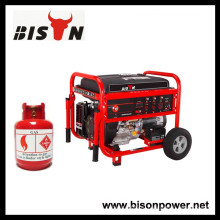 BISON (CHINA) Поставщик генератора Все виды газогенератора, генератор сжиженного нефтяного газа, генератор биогаза