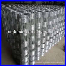 High Quality Galvanized Grassland Fence/Field Fence/Grassland Netting (Gold supplier/Manufacturer/ISO)