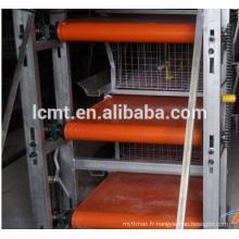 Équipement de ferme avicole automatique pour poulets de chair