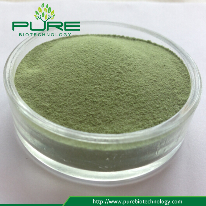 Wheatgrass Powder For Dietary Supplement (2)