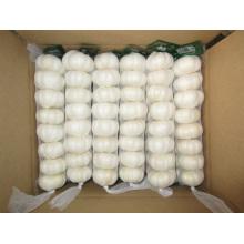 Différents emballages d'ail blanc pur Jinxiang