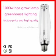 greenhouse equipment 1000w hps grow light/ hydroponics 1000w hps grow lights