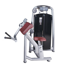 Equipamento de ginásio comercial de máquina de onda de bíceps
