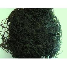 Machine séchée Couper la mer (algues, kombu, Laminaria)