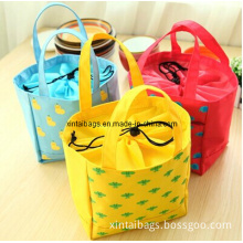 Isothermic Bags/Picnic Bag/Lunch Bag/Cooler Bag (XT0088W)