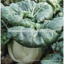 MCC01 Heimei venda quente de sementes de hortaliças sementes de repolho chinês