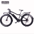 1000w Hottest 8fun mid drive motor fat electric snow bike,mountain electrical bicycle
