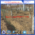 PVC-Coated Fence Roll/Euro Fence Hot Sale