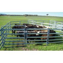 5 Bar Cattle Rail 1.6m Painel de gado alto