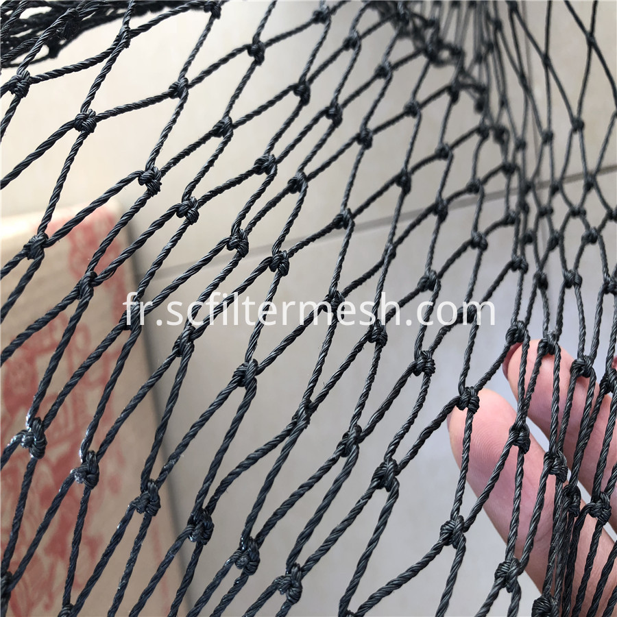 Black Knotted Net