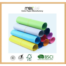 Color Paper Board (225GSM - 10 colors mixed)