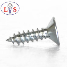 Carbon Steel Csk Head Screws with Zinc Plated
