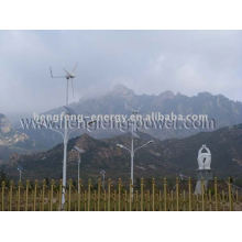 small wind and solar power turbine generator 300W,suitable for street light,maintenance free