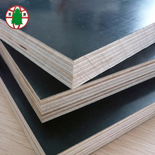 Europe style for Black Poplar Core Film Faced Plywood 13 ply shuttering film faced plywood export to Malaysia Importers