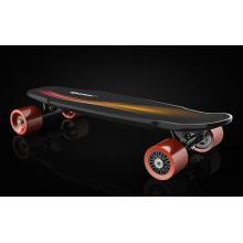 Wasserdichtes elektrisches Zweimotor-Skateboard