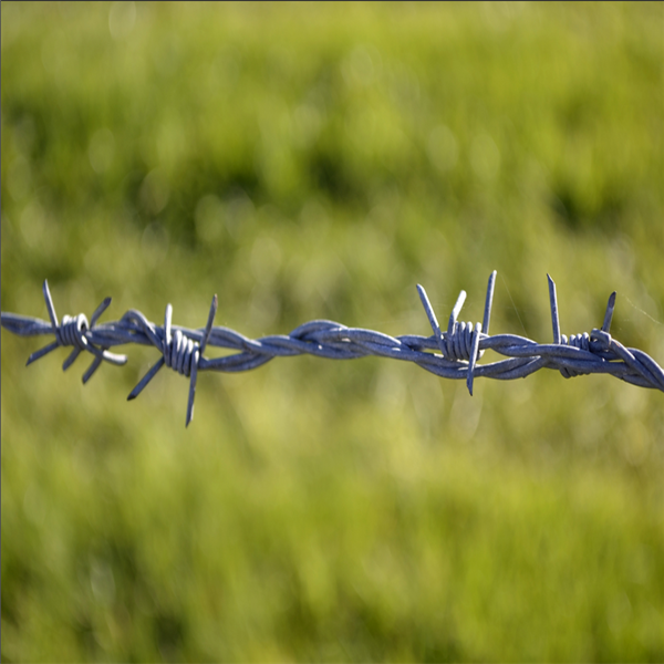 High Quality Single Strand Barbed Wire