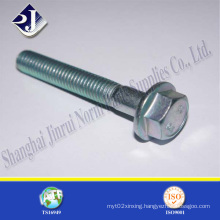 All Sizes Hex Flange Bolt with Zinc