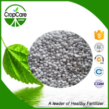 High Quality NPK+Te 19-9-19 100% Water Soluble Fertilizer