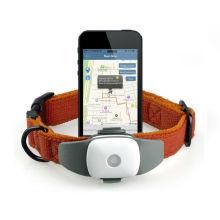 Attachement de collier de traqueur de GPS d'animal familier pour le chien et le chat