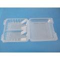 Blister Pack & Embalagem para Alimentos (HL-132)
