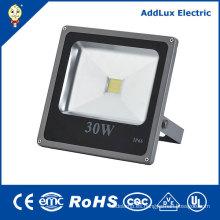 220V IP66 CE COB 30W caliente blanco luz de inundación del LED