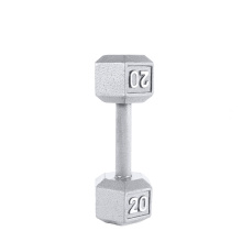 20LB ferro fundido Hex Dumbbell