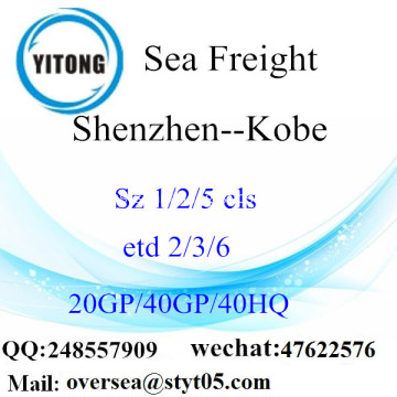 Shenzhen Port Sea Freight Shipping ke Kobe