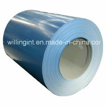 Pre-Painted & Galvanized Steel Coil