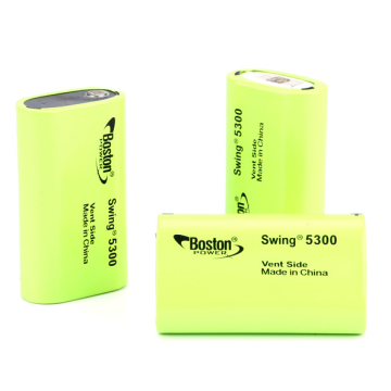 Cellule Lithium-ion rechargeable Boston Swing 5300