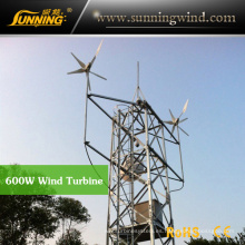 Protable Camping Wind Turbine Generator para sistema de energía solar eólica (MAX 600W)