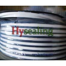 Пленка PTFE для изготовления прокладок спирально-навитых прокладок