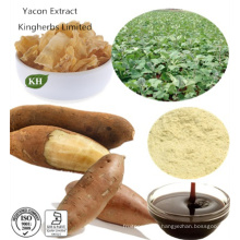 Extrait naturel naturel naturel de Yacon 40% ~ 70% Fos; Ratio Extract