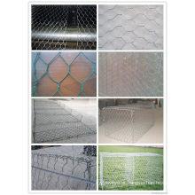 Galvanzied dobro torcido hexagonal & cesta plástica do gabion