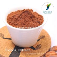 Herbes d'agrandissement de pénis produits de sexe poudre de cacao cru