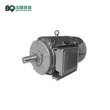 YZTD200L-2/4/8/20 Multi-speed Lifting Motor for Tower Crane