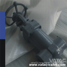 Cast and Forged Steel Bellow Sealed Gate Valve with Manual Operation