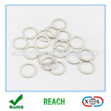 small size ring neodymium magnets on sale