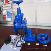 cast iron bronze trim gate valve pn16 google