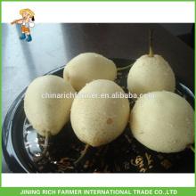 Natural Fresh Ya Pear