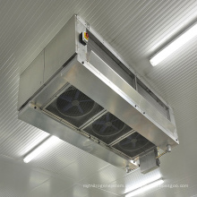 Kühlraum-Kühlschrank-Gefrierschrank der niedrigen Temperatur für Gemüse
